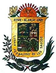H. Ayuntamiento de Las Minas, Veracruz 2018-2021