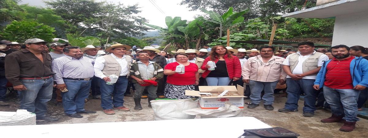 Entrega del Programa de Apoyo a Pequeños Productores, componente, PROCAFE